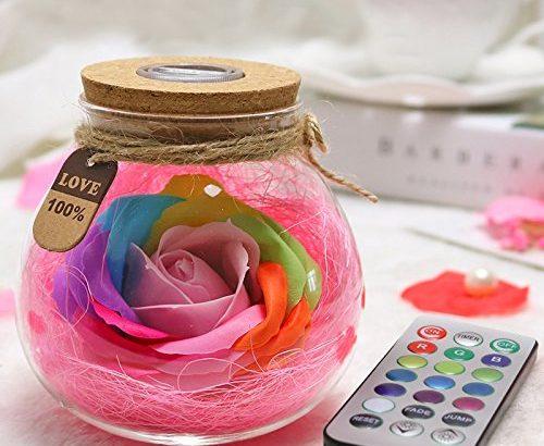 Kuulee rose licht flasche kreative romantische dimmbare rgb led dimmer licht mit fernbedienung - Romantische dekoartikel ...